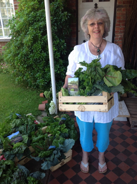 First CSA Shares of 2015